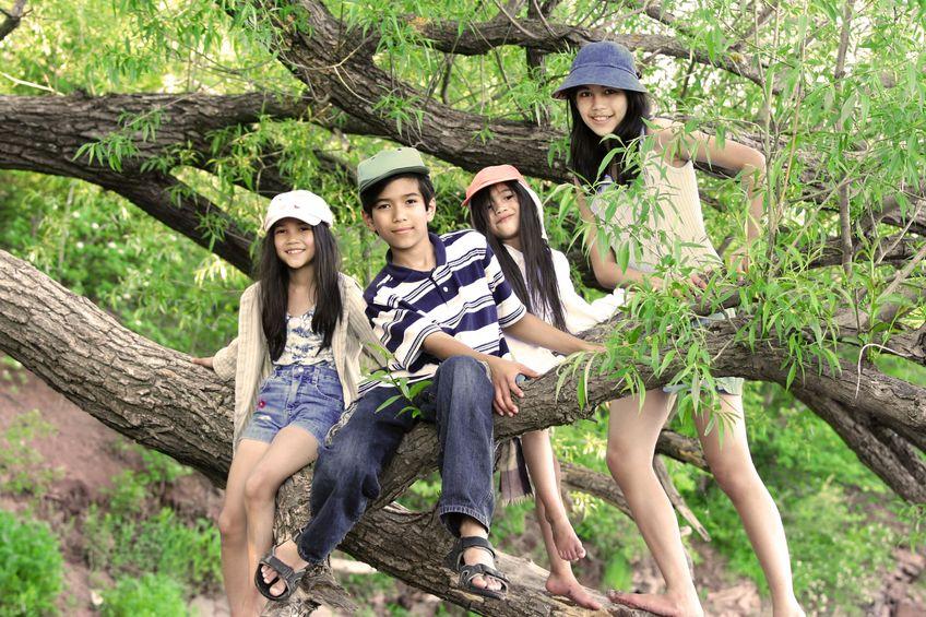 kinderen_boom