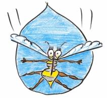 mosquito_5